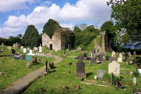 Killydonnell Friary & Graveyard is protected under the National Monuments Acts (1930-2004)