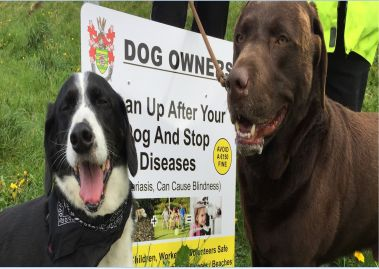 Bundoran Tidy Towns launch anti-dog fouling campaign